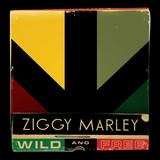 Ziggy Marley - Wild And Free Artwork