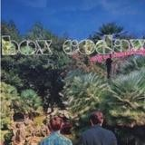 Box Codax - Only An Orchard Away