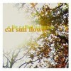 Cat Sun Flower - A Lie Called Summer: Album-Cover