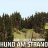 Hund am Strand - Adieu Sweet Bahnhof: Album-Cover