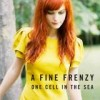 A Fine Frenzy - One Cell In The Sea: Album-Cover
