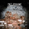 Male Bonding - Nothing Hurts: Album-Cover