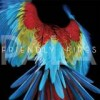 Friendly Fires - Pala: Album-Cover