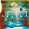 The Horrors - Skying: Album-Cover