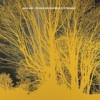 Nada Surf - The Stars Are Indifferent To Astronomy: Album-Cover