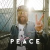 Mc Fitti - Peace: Album-Cover