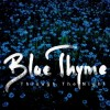 Blue Thyme - Through The Night: Album-Cover