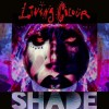 Living Colour - Shade: Album-Cover