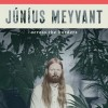 Júníus Meyvant - Across The Borders: Album-Cover