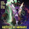Little Steven and the Disciples of Soul - Summer of Sorcery: Album-Cover