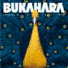 Bukahara - Canaries in a Coal Mine: Album-Cover