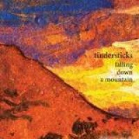 Tindersticks – Falling Down A Mountain
